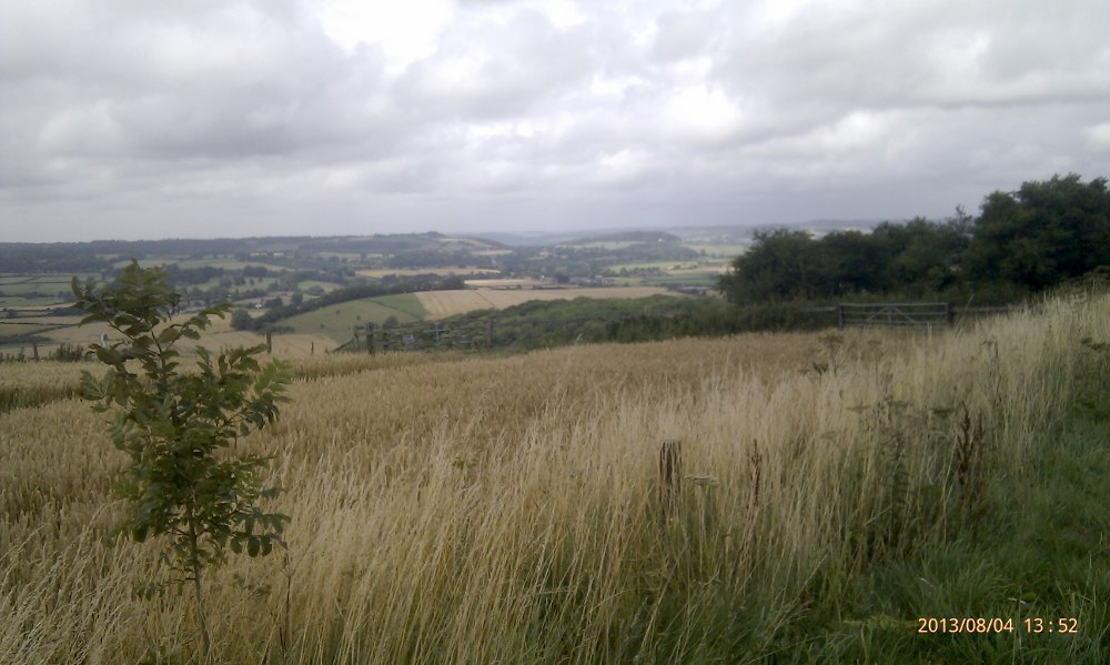 View from near the highest point on the Blackmoor Tour audax.
