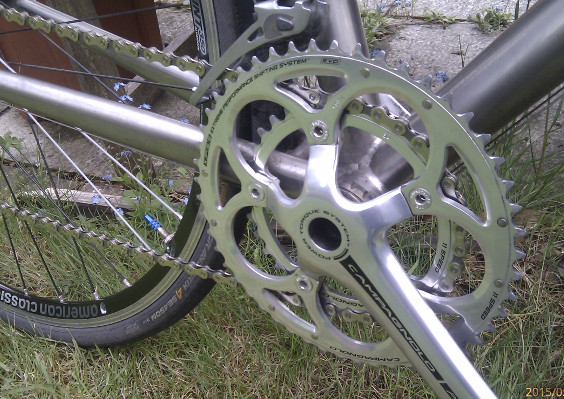 Cleaned the chain and chainrings